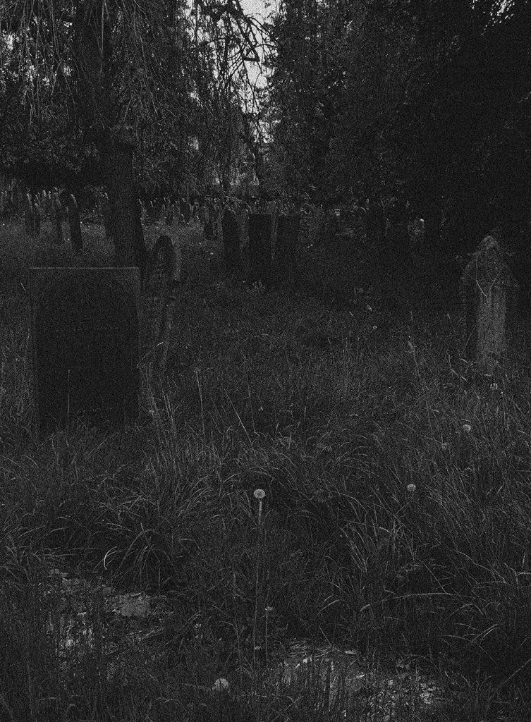 grainy graveyard_web